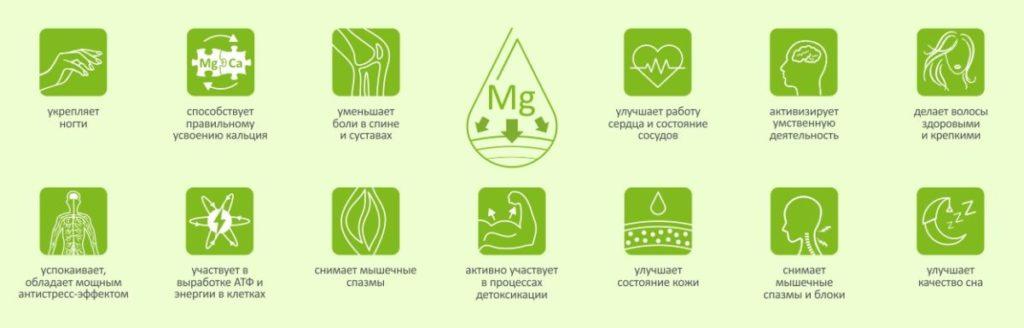 Роль магния в организме человека картинка